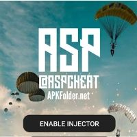 ASP Cheat Injector PUBG
