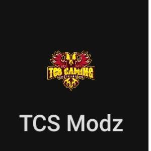 GG TCS Modz