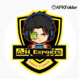 AH Esports